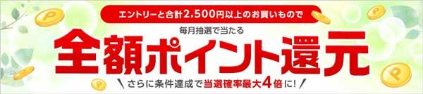楽天カード2,500円以上利用で抽選で全額ポイント還元!
