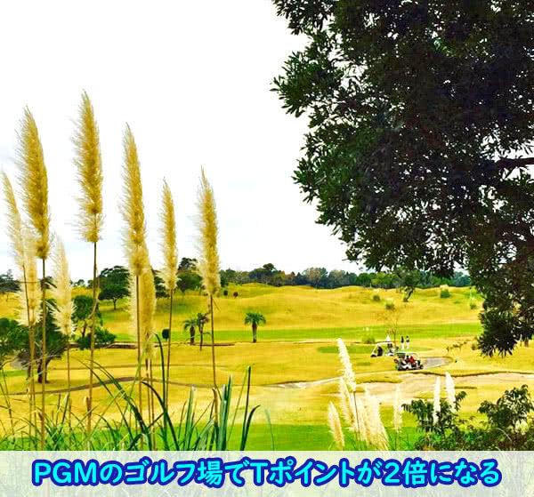 PGMゴルフでファミマTカードがあればポイント倍増